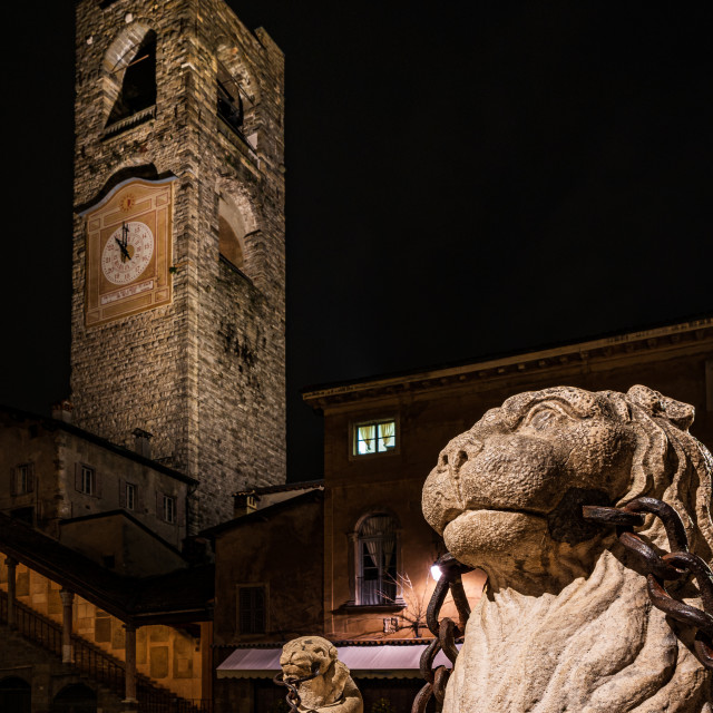 """""""Nocturne image of close up of the lion of the Contarini fountain"""" stock image"""