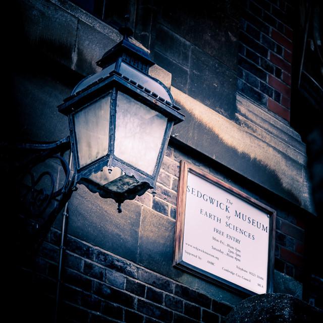 """Sedgwick Museum, Cambridge UK"" stock image"