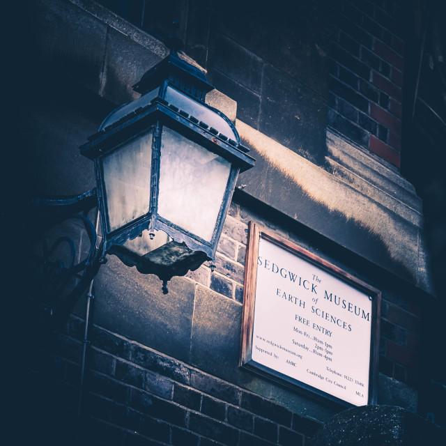 """Sedgwick Museum, Cambridge UK."" stock image"