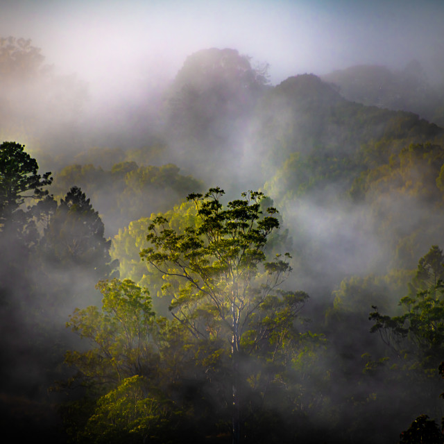 """""""The Mystery of Misty Mountains"""" stock image"""