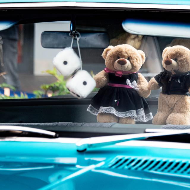 """""""You Rock Teddy"""" stock image"""