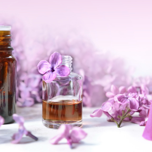 """""""bottles of essential oil and incense with purple lilac flower ba"""" stock image"""