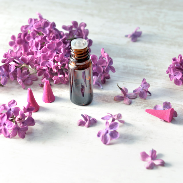 """""""bottle of essential oil and incense with purple lilac flower bac"""" stock image"""