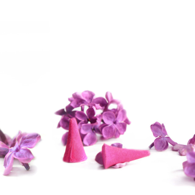 """""""panoramic view on oil essential bottle and pink petals of lilac flowers on white"""" stock image"""