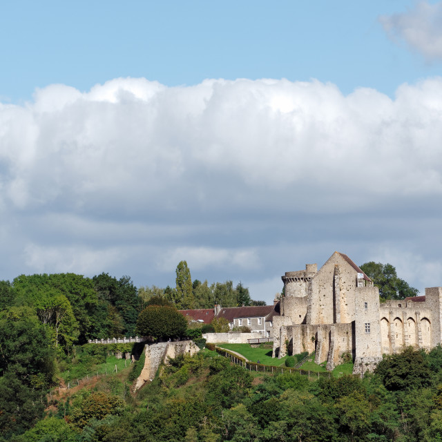 """Castle of la Madeleine in Chevreuse valley"" stock image"