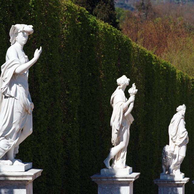 """""""Versailles garden"""" stock image"""