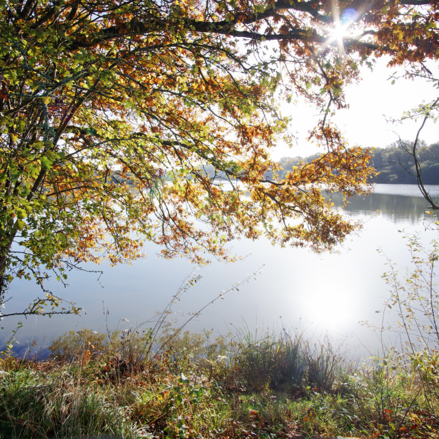 """Hollandes lake"" stock image"