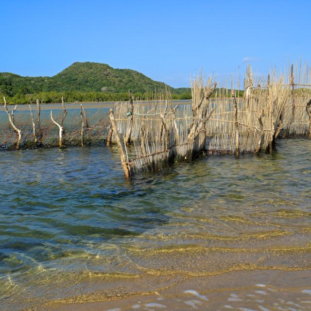"""""""Traditional fish trap - Kosi Bay"""" stock image"""