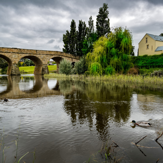 """Richmond River with Old Convict Bridge Tasmania"" stock image"