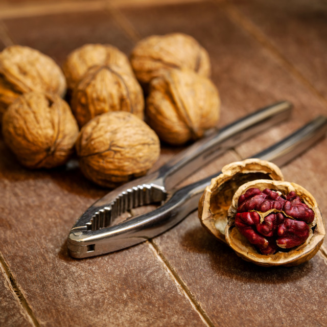 """Red Danube Walnuts with silver nutcracker on wooden background"" stock image"