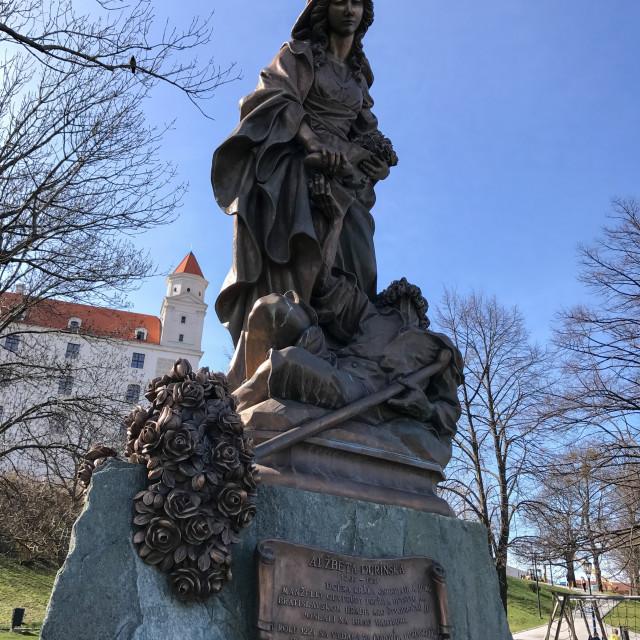 """Bratislava Castle"" stock image"