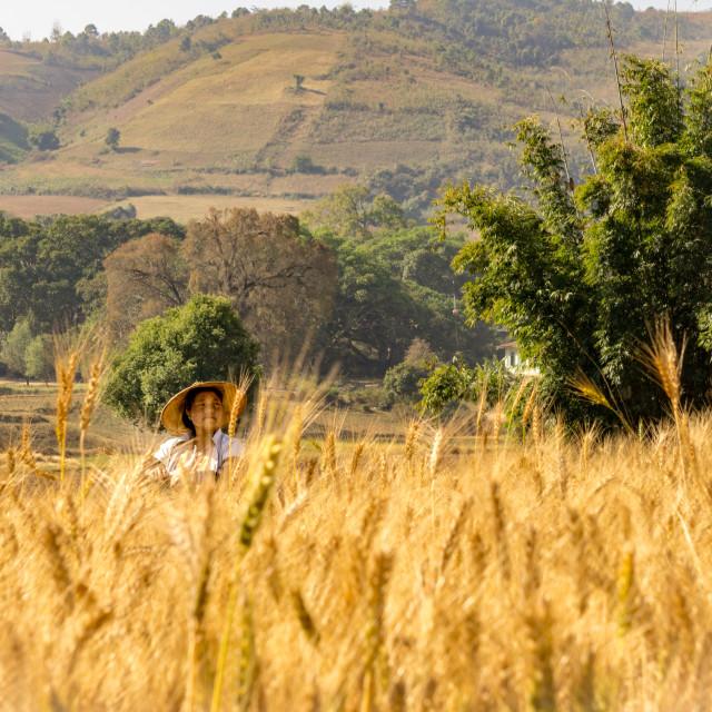 """Faces of Myanmar - Trek through the Inle Region"" stock image"