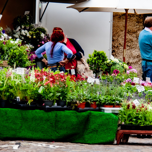 """""""Cobbled Market Place, market stall displaying and selling flowers and plants. Richmond, North Yorkshire."""" stock image"""