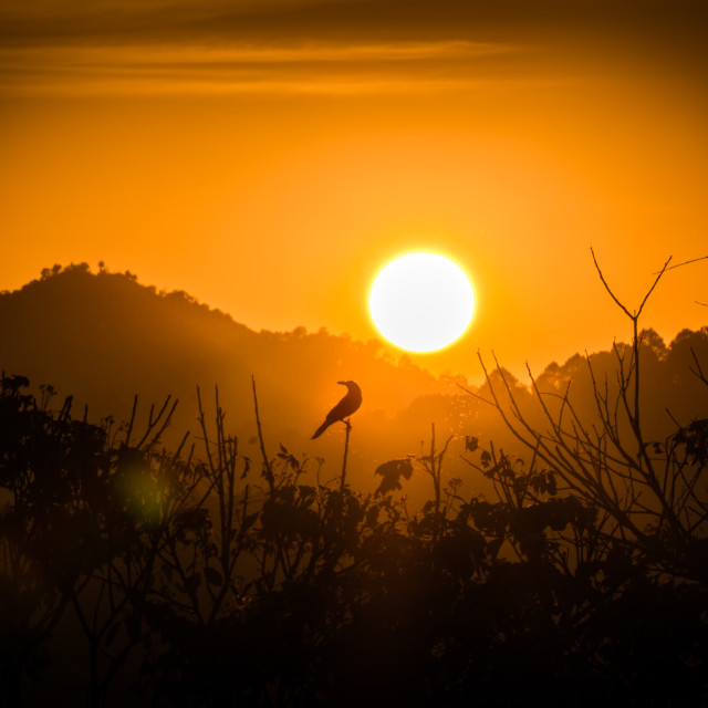 """""""Sunset in Kalaw"""" stock image"""