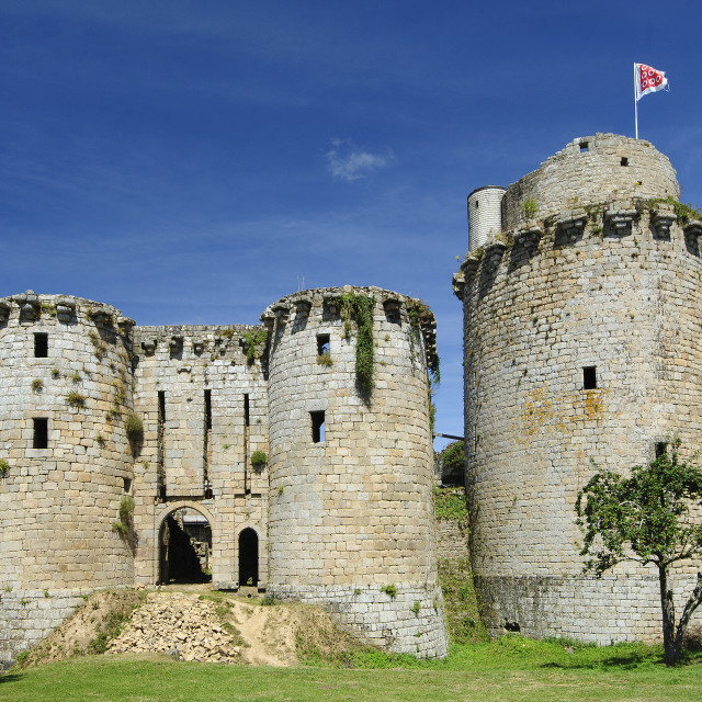 """""""Chateau Tonquedec, Brittany"""" stock image"""