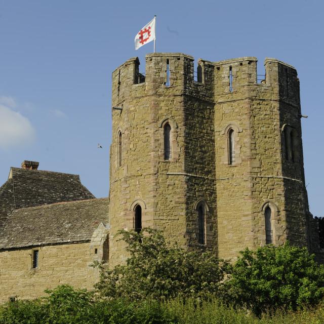 """Stokesay Castle, Shropshire"" stock image"