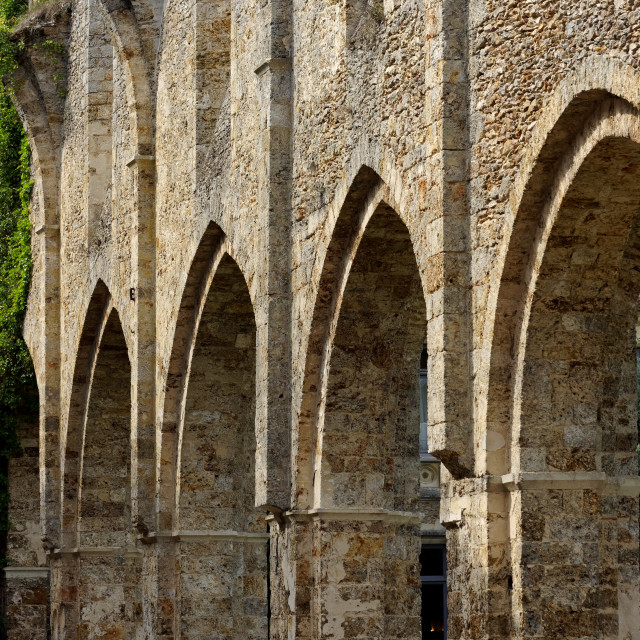 """""""Vaux de Cernay abbey"""" stock image"""