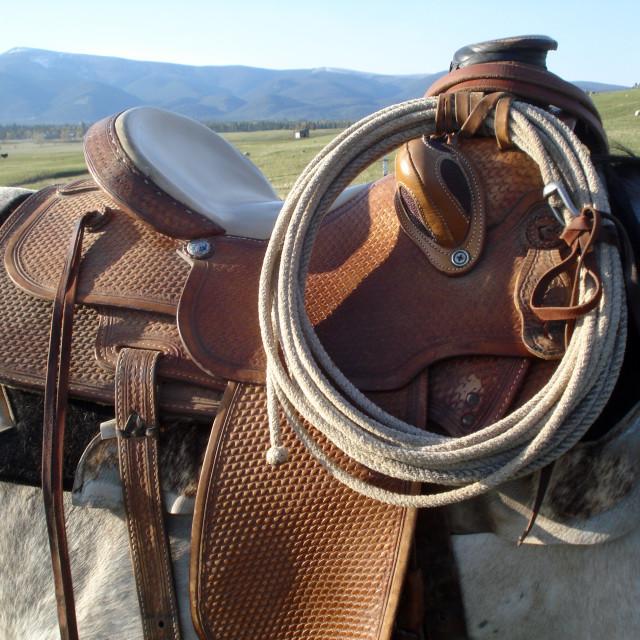 """Saddle and lasso"" stock image"