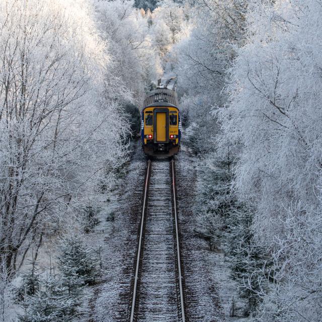 """""""railway in frosty landscape"""" stock image"""