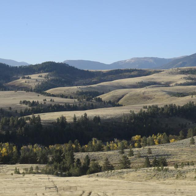 """Absaroka Wilderness Beartooth Mountains, Montana"" stock image"
