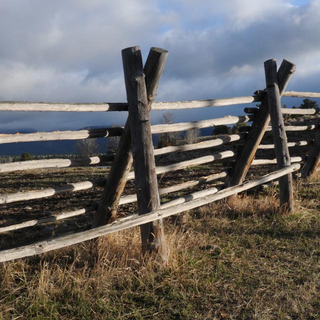 """Jackleg Fencing"" stock image"
