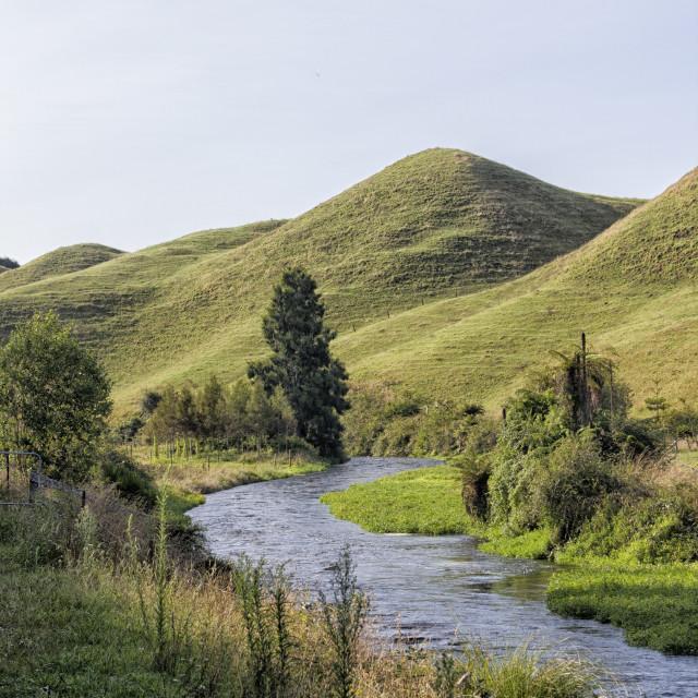 """Lovely countryside with brook near Potaruru, New Zeland"" stock image"