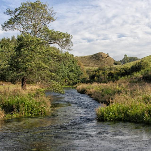 """Lovely landscape near Potaruru in New Zealand"" stock image"