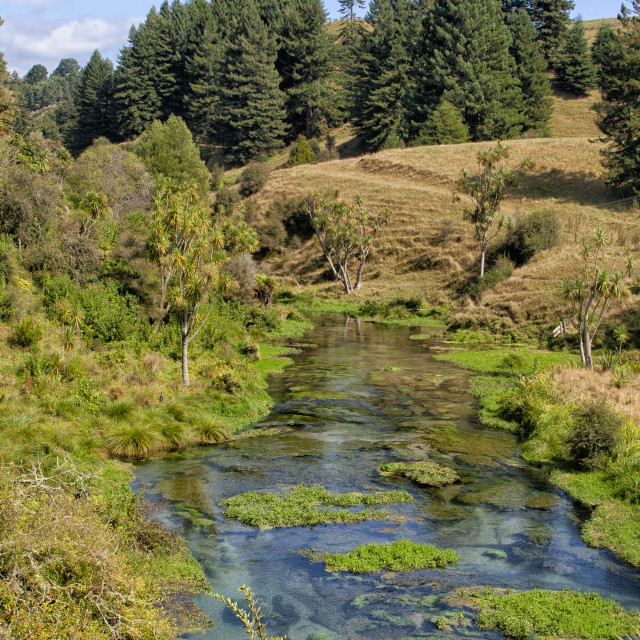 """Landscape near Potaruru in New Zealand"" stock image"