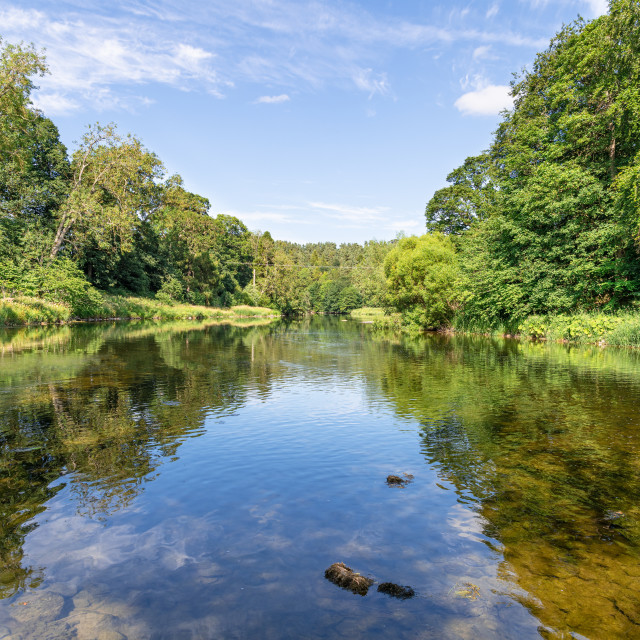 """River Teviot, Scottish Borders"" stock image"