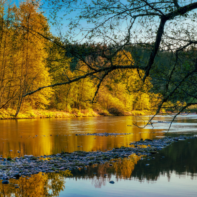 """""""Sunset on the Willamette River, Springfield, Oregon"""" stock image"""