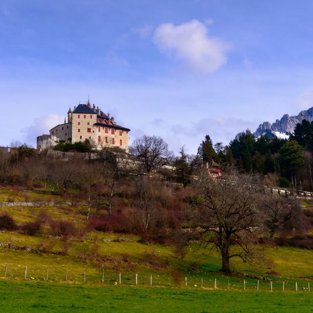 """""""Le Château de Menthon-Saint-Bernard"""" stock image"""