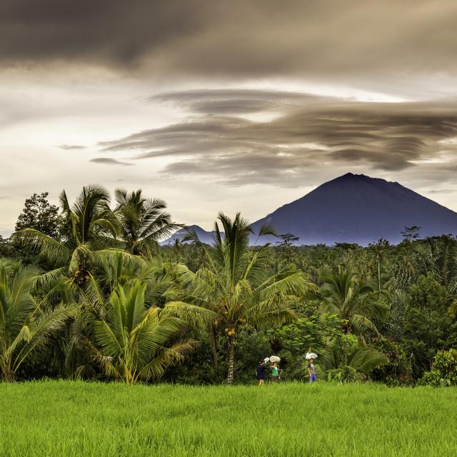 """""""Bali vulcano"""" stock image"""