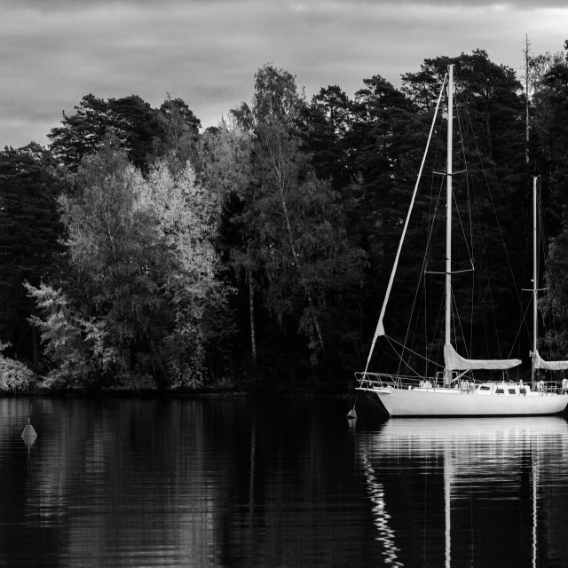 """White Sailboat"" stock image"