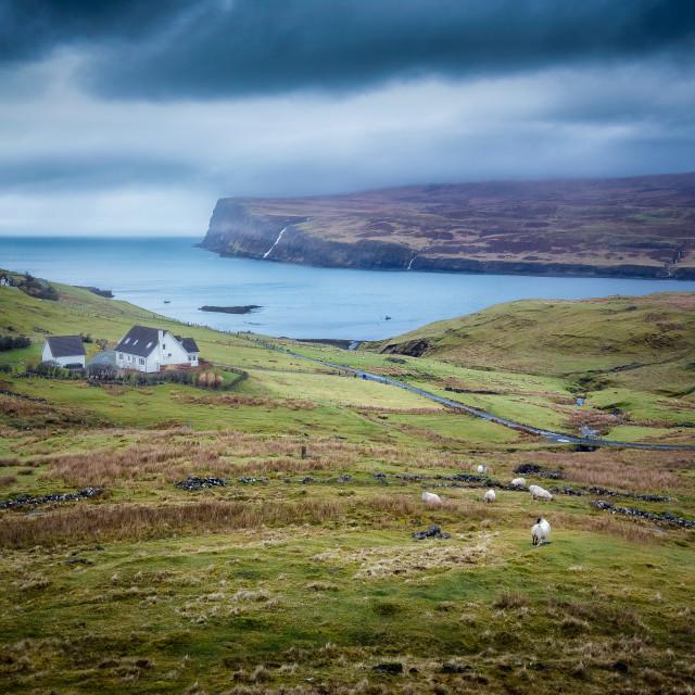 """""""Scottish landscape, Isle of Skye, Scotland, United Kingdom"""" stock image"""