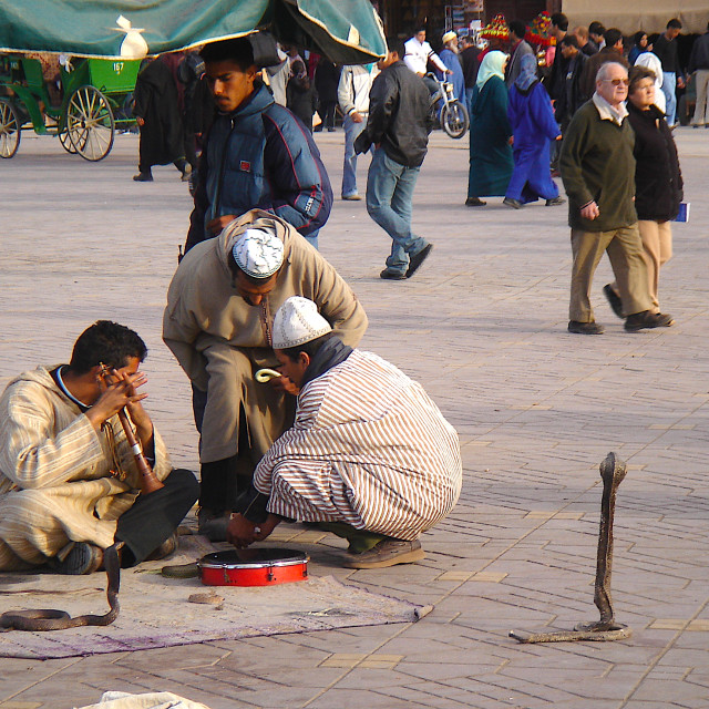 """Snake charmers in Marrakech"" stock image"