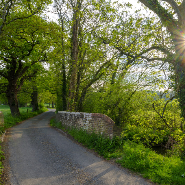 """Beckford bridge and country lane in spring near Southwick, UK"" stock image"
