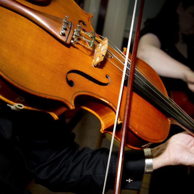 """""""Playing the Violin"""" stock image"""