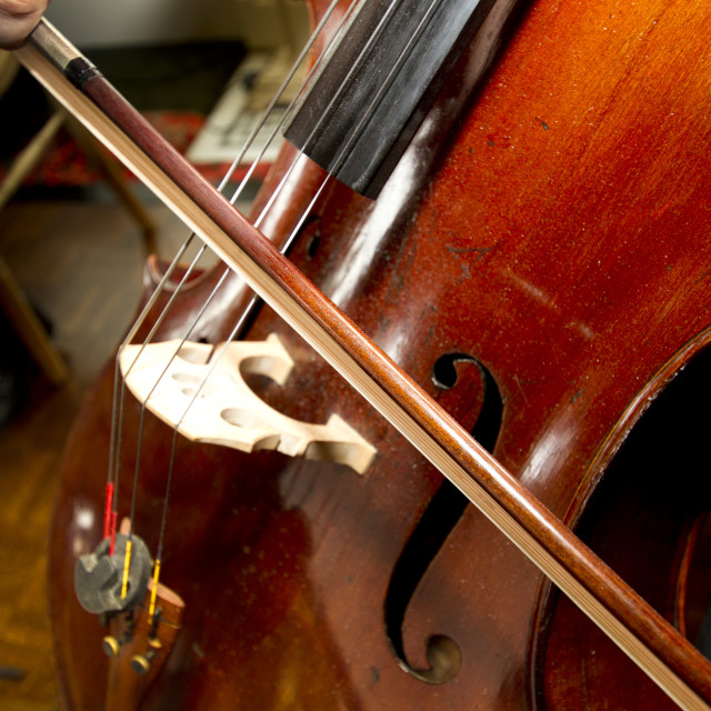 """""""Playing the Cello"""" stock image"""