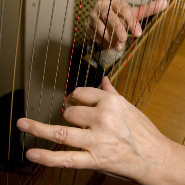 """""""Playing the Harp"""" stock image"""