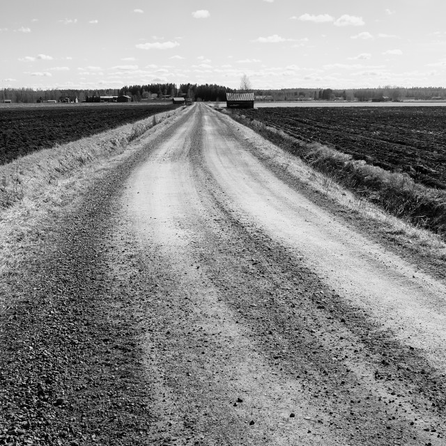 """""""Gravel Road On A Spring Day"""" stock image"""