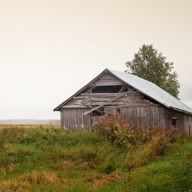 """""""Summer Rain On The Fields"""" stock image"""