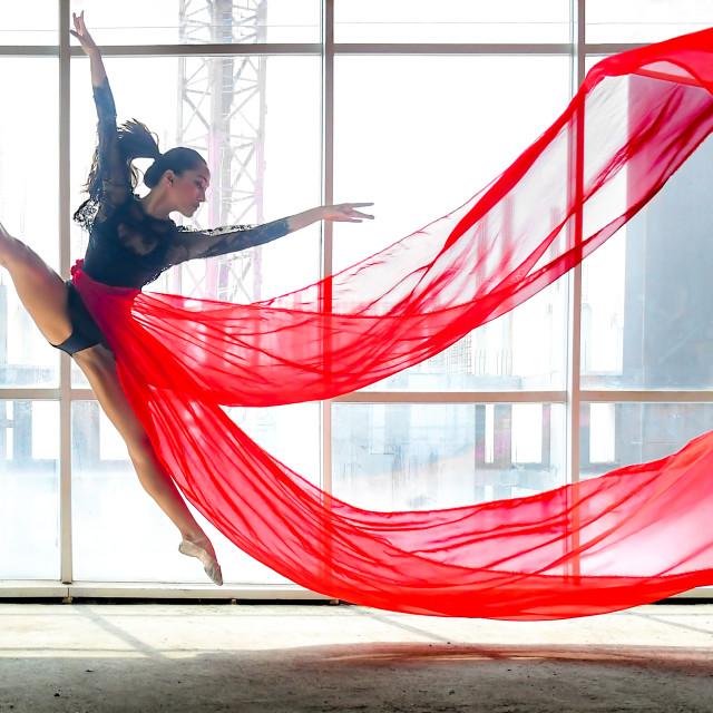 """""""Ballerina Pano 02"""" stock image"""