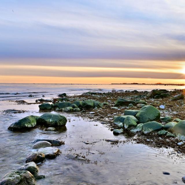 """Coastline in sunset"" stock image"