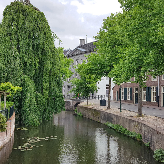 """Old street with a canal and a big green willow tree"" stock image"