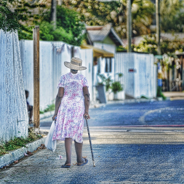 """""""Out for a Walk"""" stock image"""