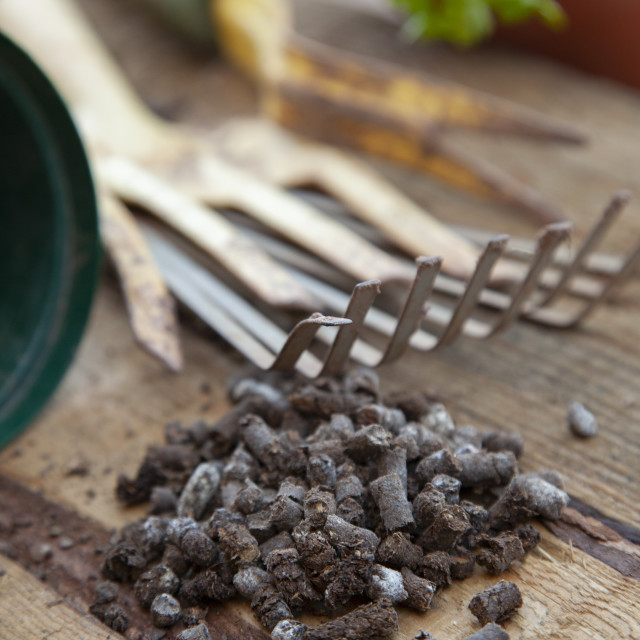 """""""A close up of pellet fertilizer on a wood bench in a garden."""" stock image"""