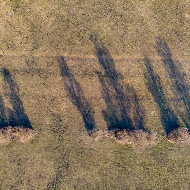 """""""Aerial winter picture over trees with shadows in sunset light"""" stock image"""