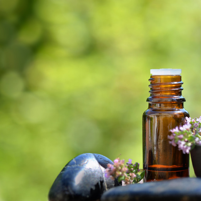 """""""bottle of essential oil and flowers of aromatic herb on and pebble on green background"""" stock image"""