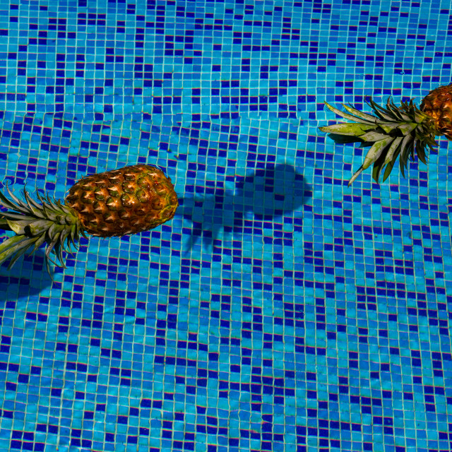 """""""Pineapple Floating In blue Water In Swimming Pool. Tropical vacation concept. Exotic tropical background."""" stock image"""