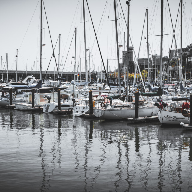 """SF Marina"" stock image"